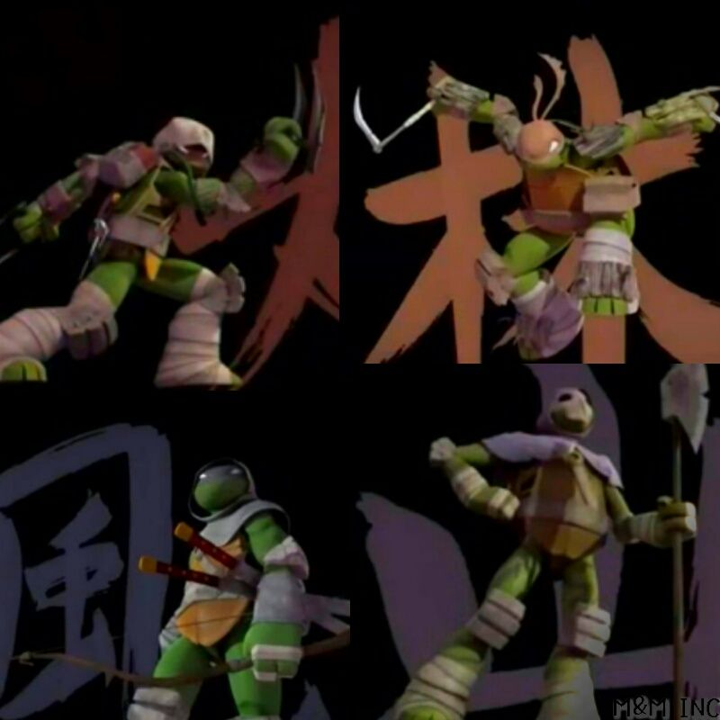 Vision quest tmnt tmnt leo