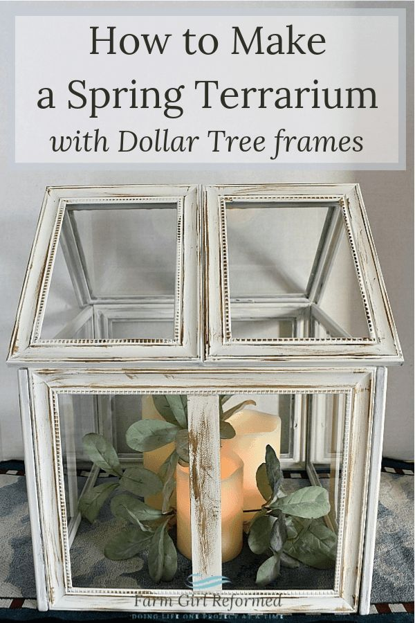 How to Make a Spring Terrarium with Dollar Tree Frames How to Make a Spring Terrarium with Dollar Tree Frames