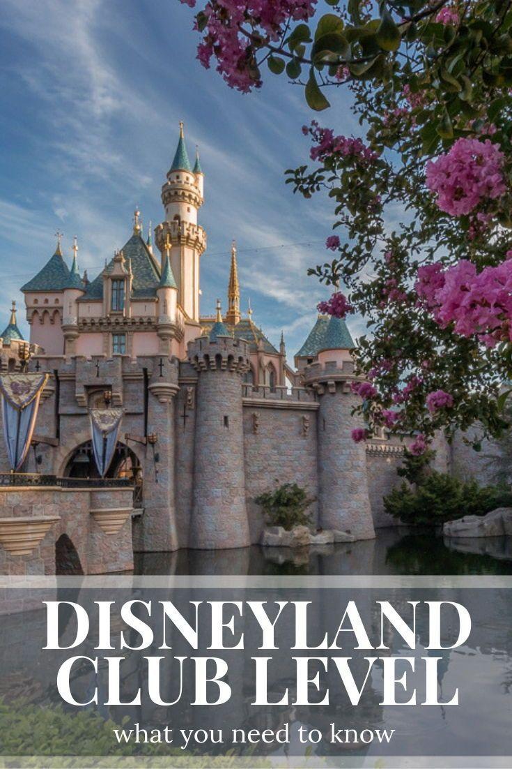 Disneyland Close Historic Calif Bungalow 9: Disneyland Hotel Club Level: Celebrating Walt In Style