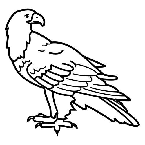 Aguilas Para Colorear En Caricatura Buscar Con Google