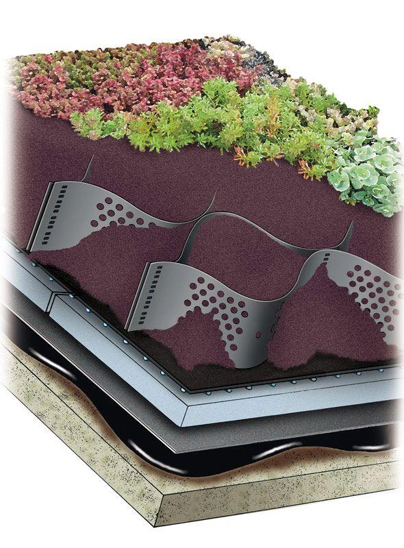 Architectureweek Image Green Roof Roof Garden Design Roof
