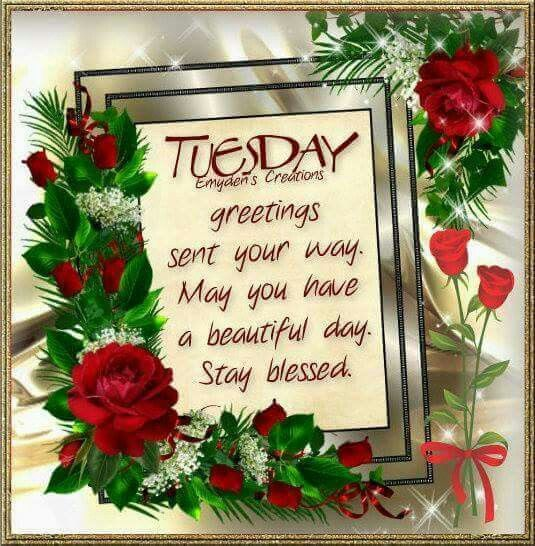 Tuesday Blessings   Tuesday greetings, Happy tuesday quotes, Blessed