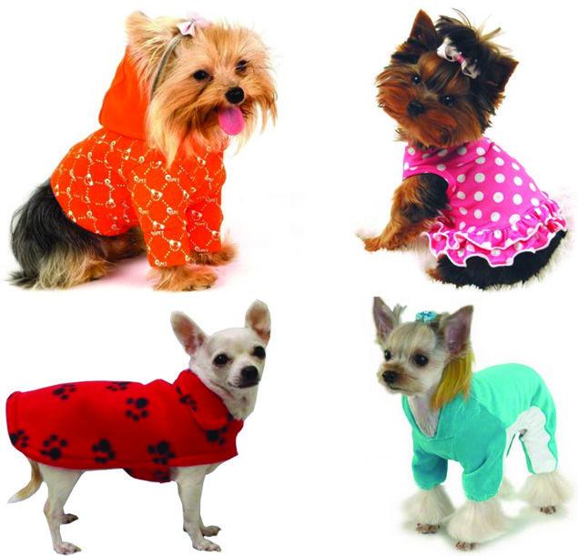 Glitter Moda Fashion: Roupas para cachorros   PETS FASHION ...