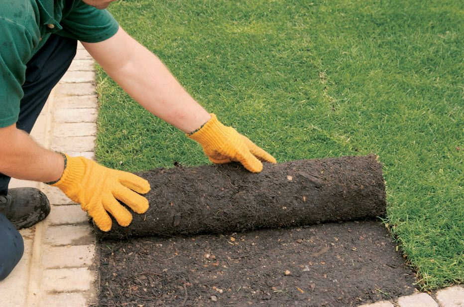 Turf Laying Macquarie How to lay turf, Lawn mowing