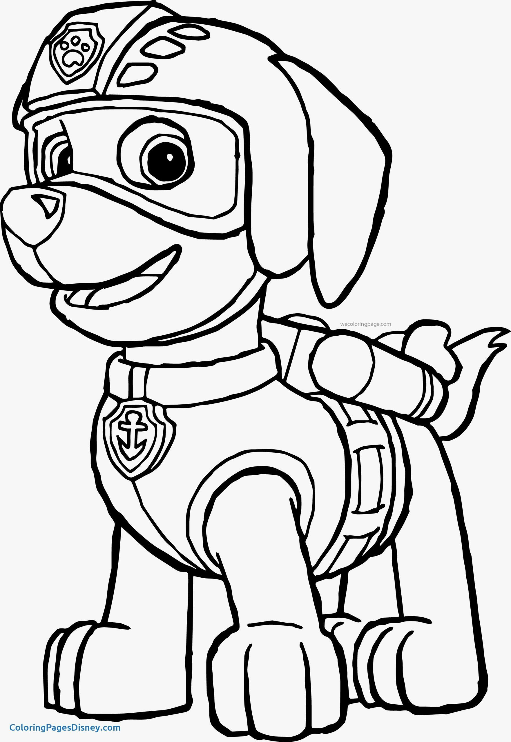 Dog Paw Coloring Page Youngandtae Com Paw Patrol Coloring Paw Patrol Coloring Pages Paw Patrol Printables