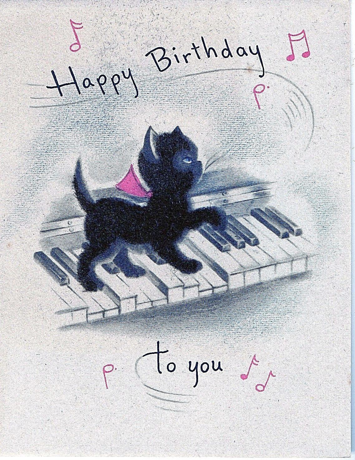 Vintage Black Fuzzy Kitten Kitty Cat On The Keys Norcross Birthday Greeting Card For Sale 6 Vintage Birthday Cards Birthday Greeting Cards Vintage Birthday