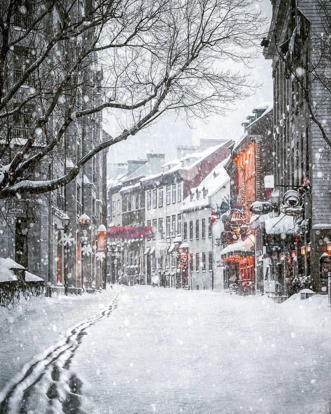 картинки снежность в городе