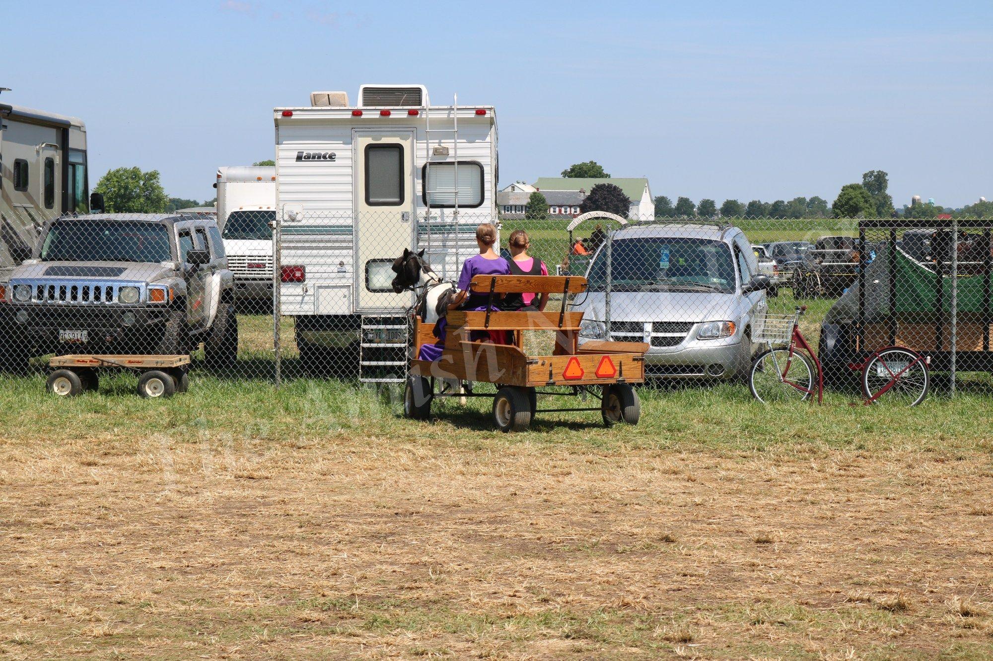 Lancaster County Carriage & Antique Auction Antique