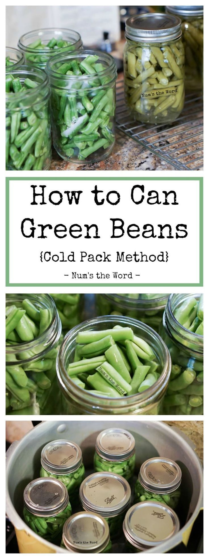 This step by step guide (with photos) on how to can green