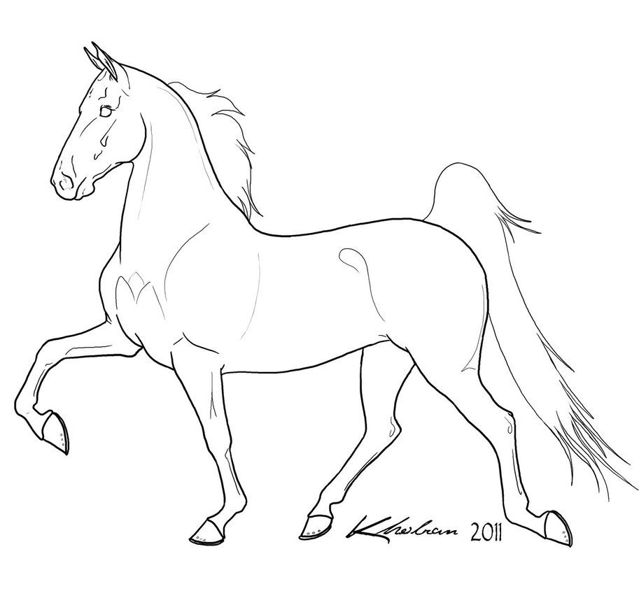 gaited horse lineart by kholran on deviantart color horses