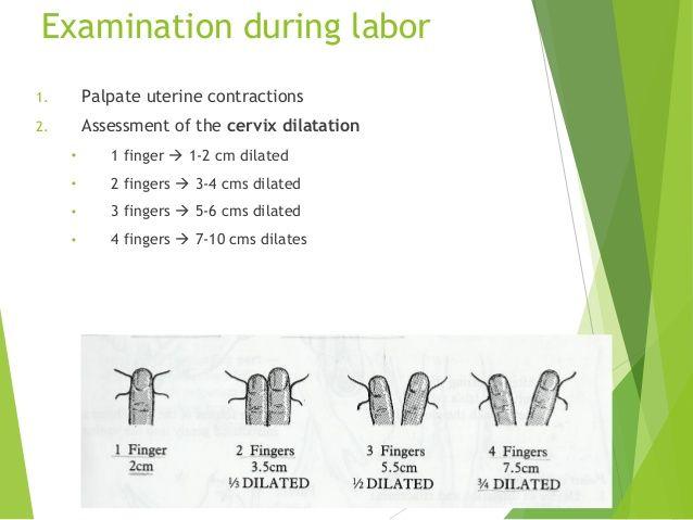Cervix Dilation with Finger Cervix Dilation Fingertip The cervix
