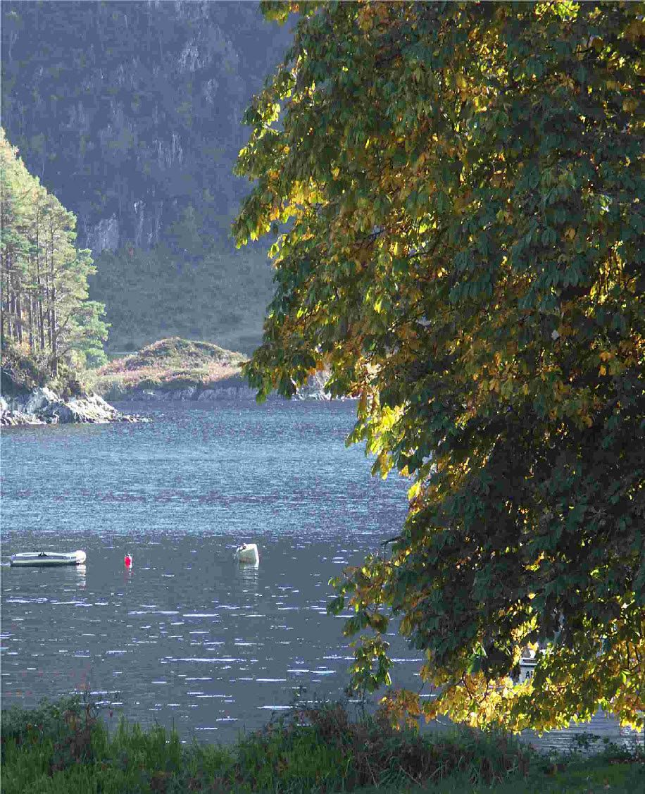 Autumn is lovely around Glencoe. This is near Glenfinnan. I will be there October 2015. Can't wait!