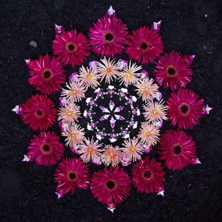 Você nunca viu mandalas tão lindas como estas! is part of Mandala art, Flower mandala, Nature mandala, Flower art, Mandala, Flower rangoli - Conheça o trabalho de Kathy Klein, que utiliza diversas flores coloridas para fazer lindas mandalas coloridas e cheias de vida! É de encher os olhos de beleza!