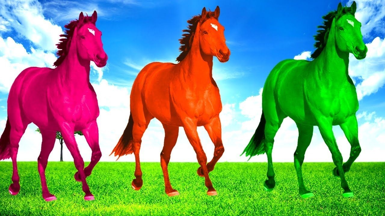 Horse Nursery Rhymes Finger Family Cartoon Kids Learning Dinosaurs Quizzes Children Songs Care