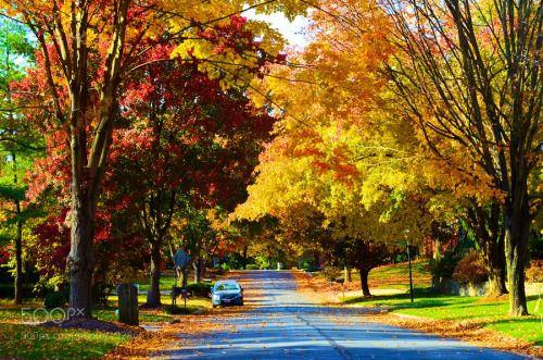 Fall by mzhao63  autumn landscape fall seasons Fall mzhao63