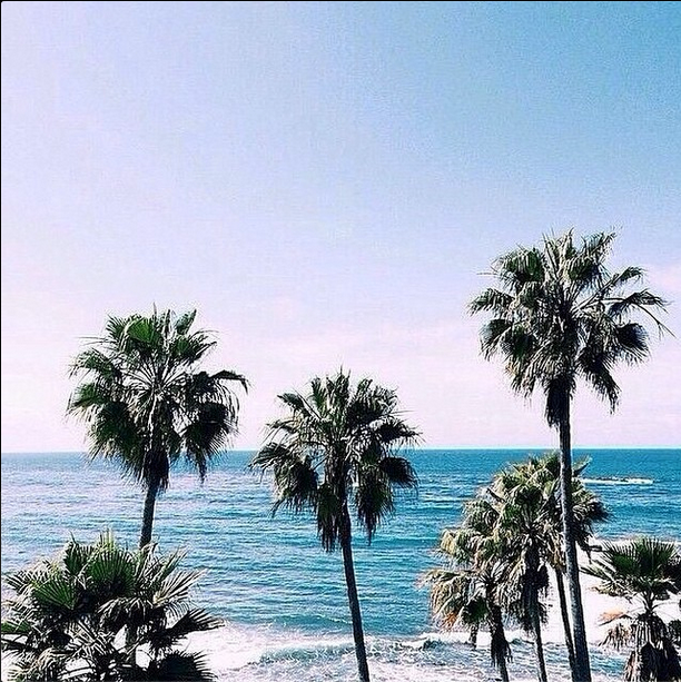 A Pristine Beach Warm Tropical Breezes And The Love Of: We Hope Your Day Is Filled With Lots Of #daylight