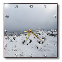 3dRose - Jos Fauxtographee Winter - A snow scene with brush on an overcast day - Wall Clocks