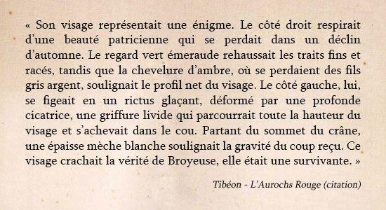 Aurochs Rouge - Chimeterre T1 par Tibéon Citation 06