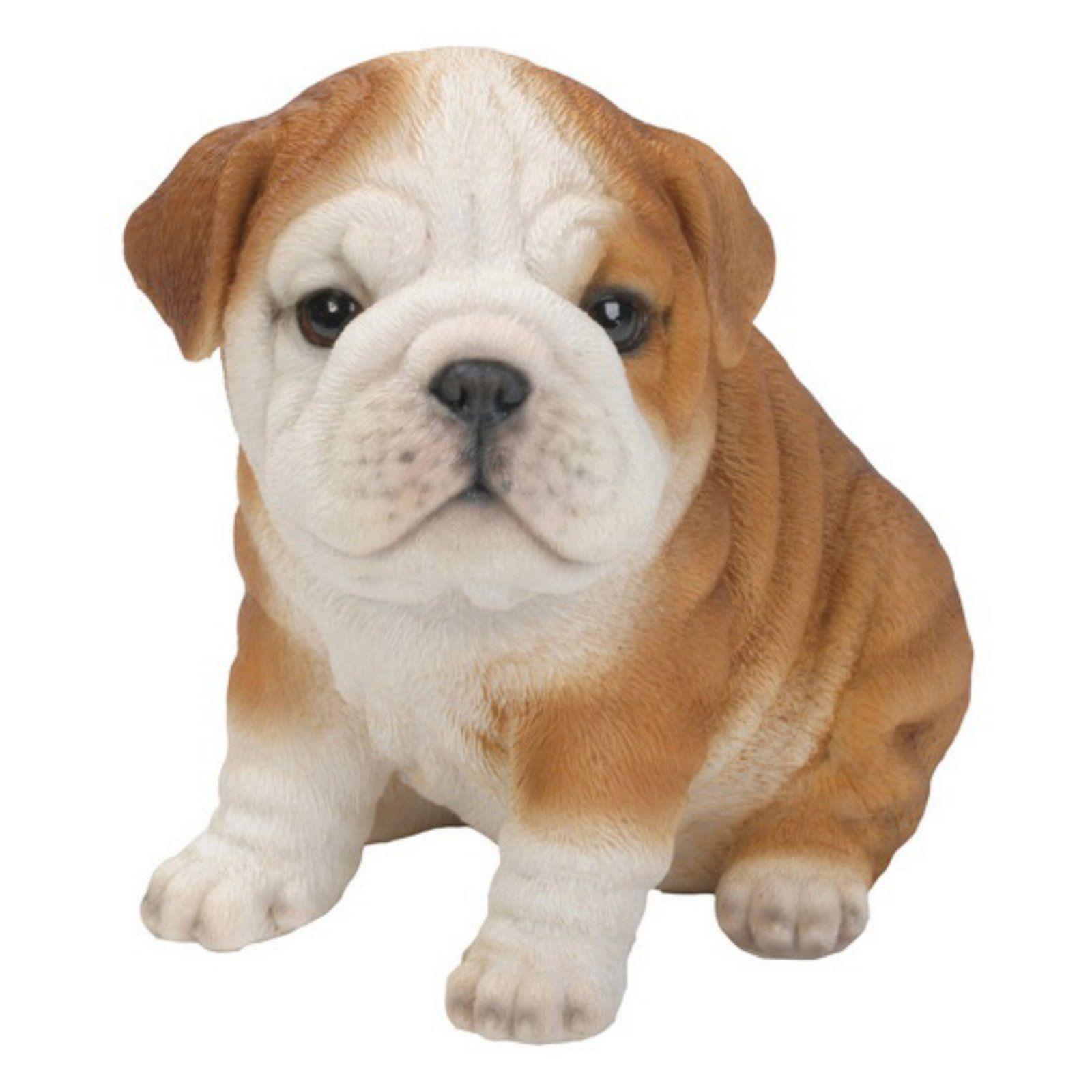 Hi Line Gift Ltd Sitting Bulldog Puppy Garden Statue In 2019
