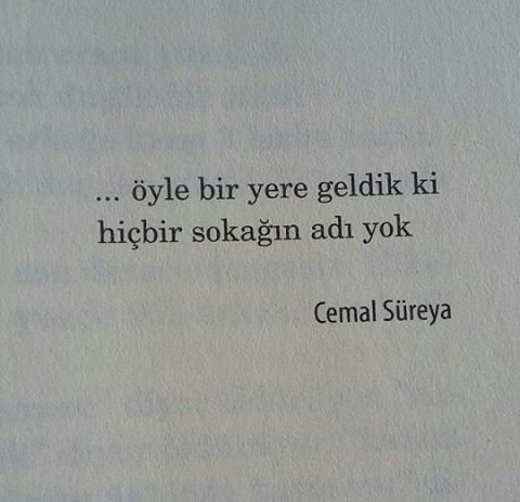 Cemal Süreya 3 Book Quotes Poetic Words Quotes