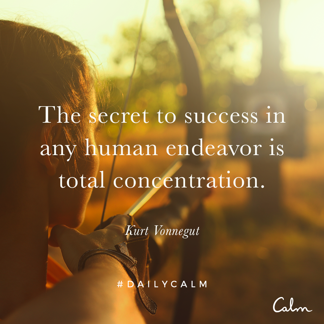 The Secret To Success In Any Human Endeavour Is Total Concentration Kurt Vonnegut Quote From The Daily Calm Daily Calm Secret To Success Calm Quotes