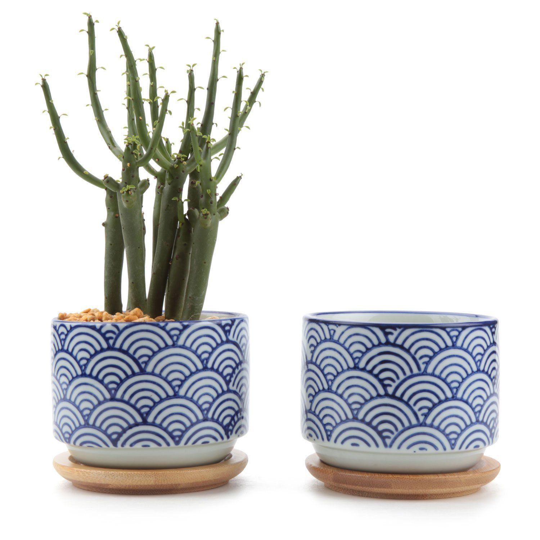 T4u 3 Inch Ceramic Japanese Style Serial No 3 Succulent Plant Pot Cactus Plant Pot Flower Pot Container Planter Whi Cactus Plant Pots Flower Pots Potted Plants