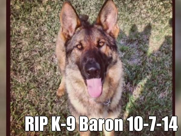 Police Dog Baron Killed On Duty While Going After A Suspect Rip K 9 Baron 10 7 14 Courtesy Of Pinstamatic Http Pinstamatic Co Dog Death Police Dogs Dogs