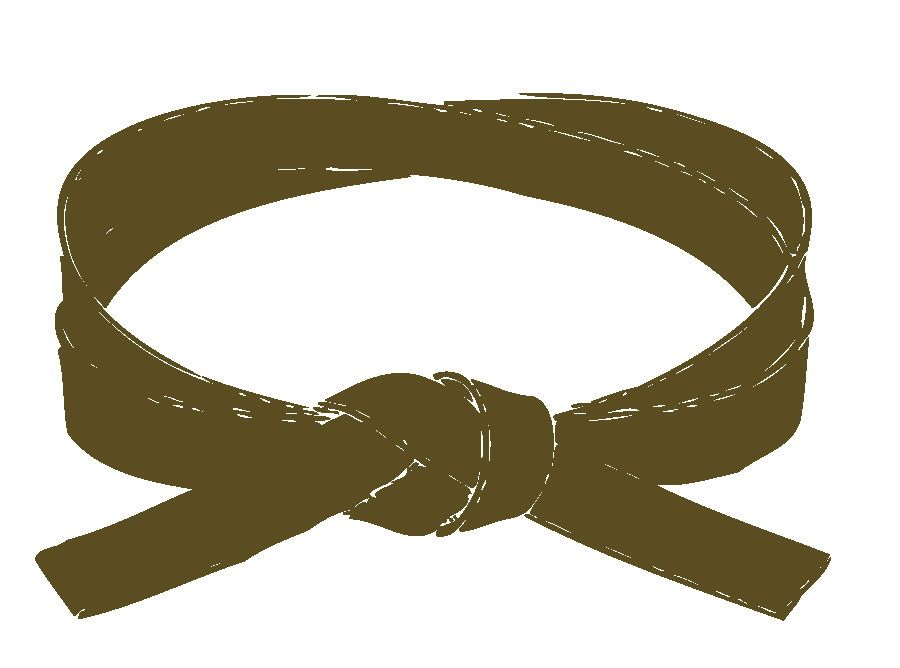 Brown belt in aikido practice up to 10h a week go to
