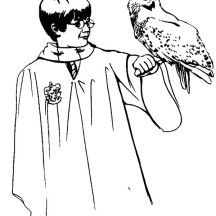 Harry Potter And Her Owl Hedwig Coloring Page Harry Potter