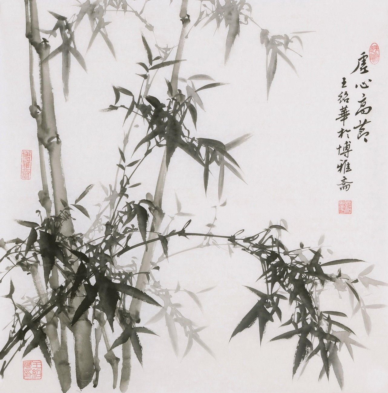 Ink Bamboo - CNAG005935