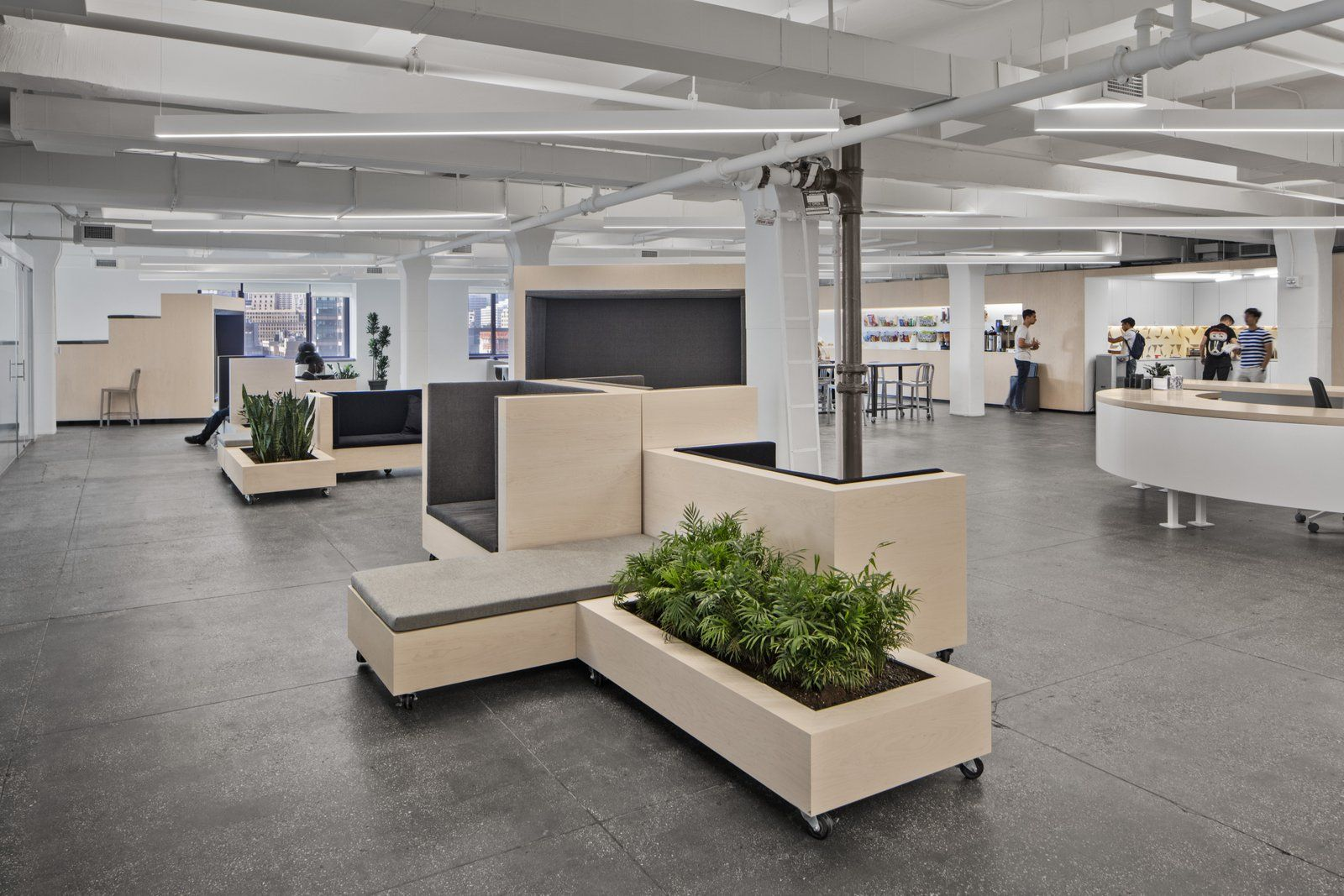 Managed by Q Offices - New York City - Office Snapshots