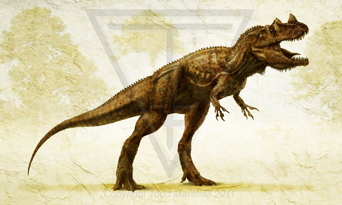 Another image of a Rot Dragon referred to in academic circles as Ceratosaurus.
