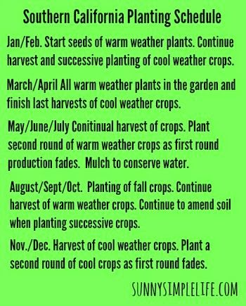 Growing An Urban Vegetable Garden - Tips And Information For Year Round Gardening In Southern California