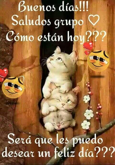 Pin De Betsabeth Gomez En Imagenes De Buenas Noches Saludos De Buenos Dias Saludos D Buenos Dias Memes Nuevos