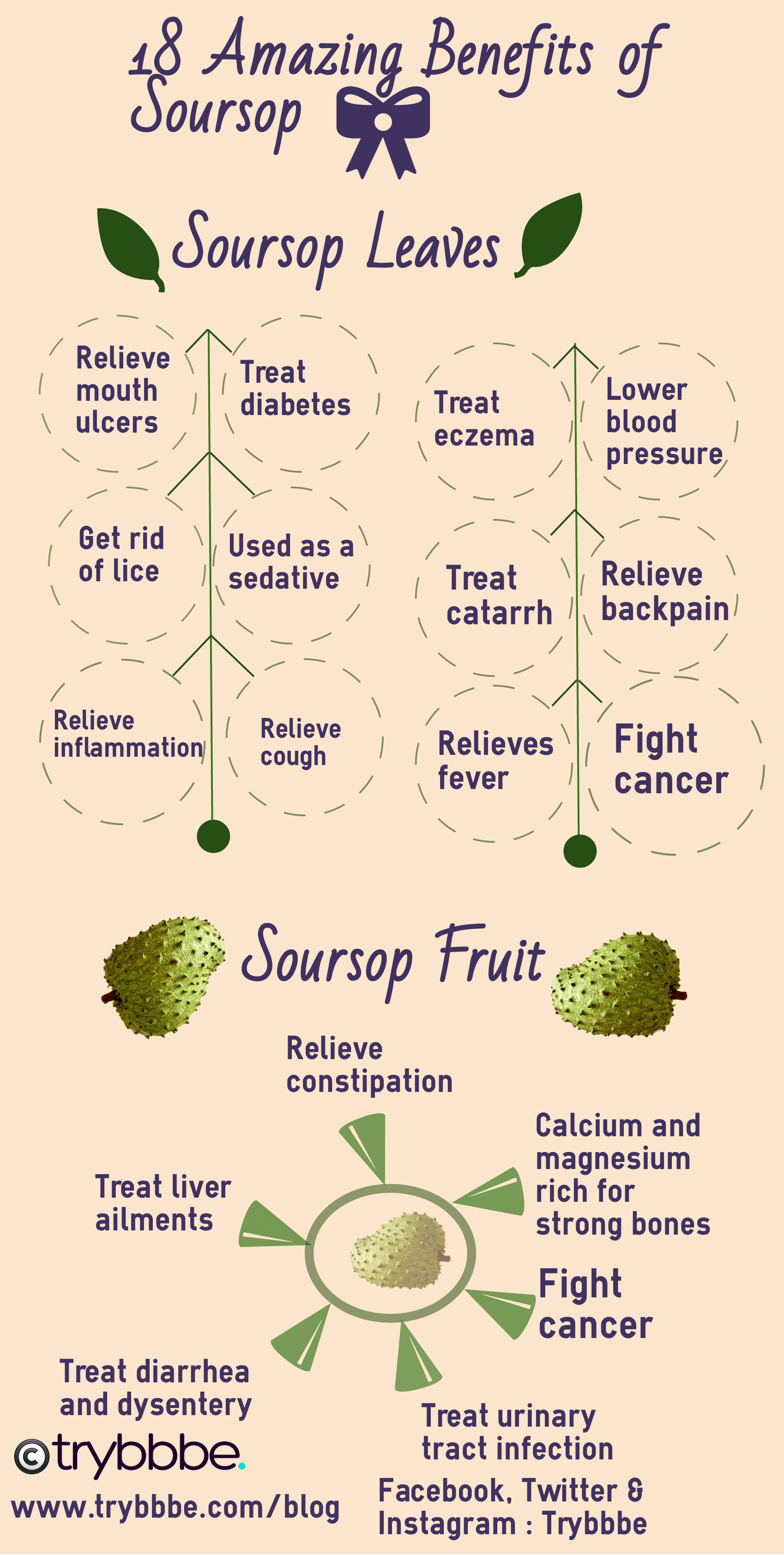 health benefits of soursop (with images) | soursop benefits
