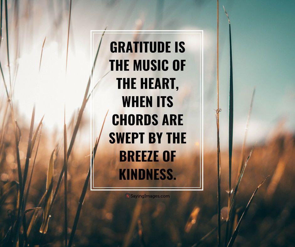 Gratitude Quotes Quotation About Gratitude Sayingimages Com Gratitude Quotes Quotations Gratitude