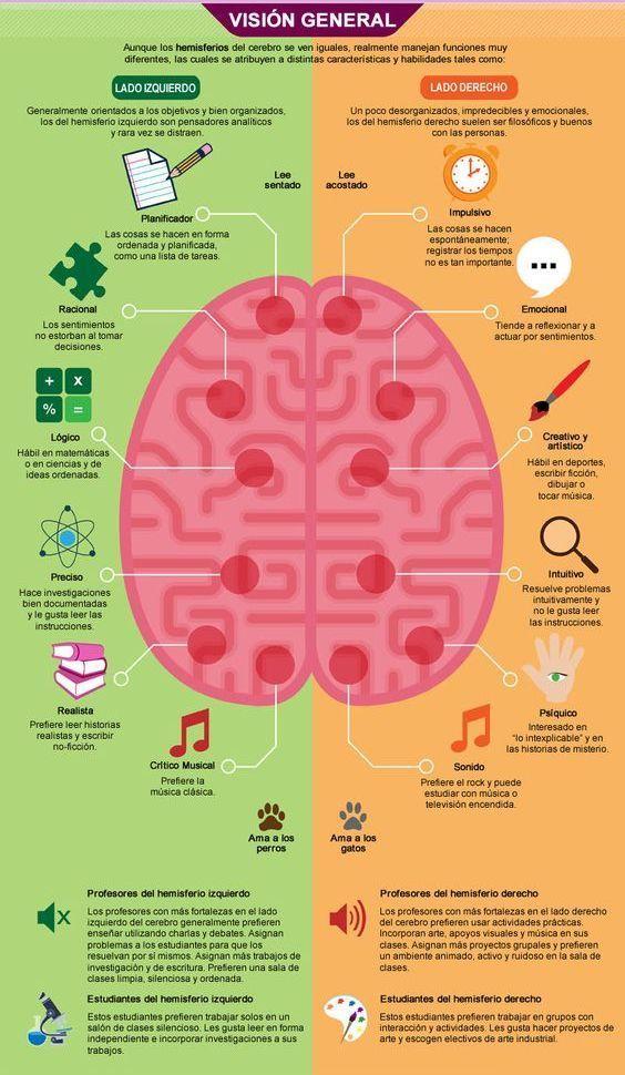 El cerebro: lado izquierdo vs lado derecho. [Infografía] | Pinterest ...