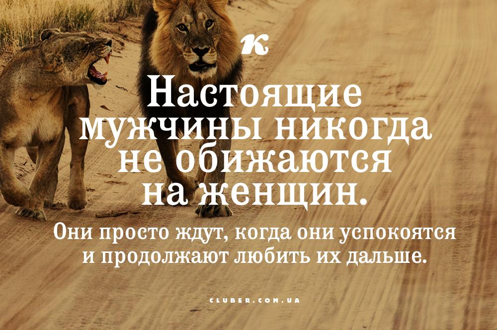 крест стоял если львы обижаются то чел нравится открытка входит число