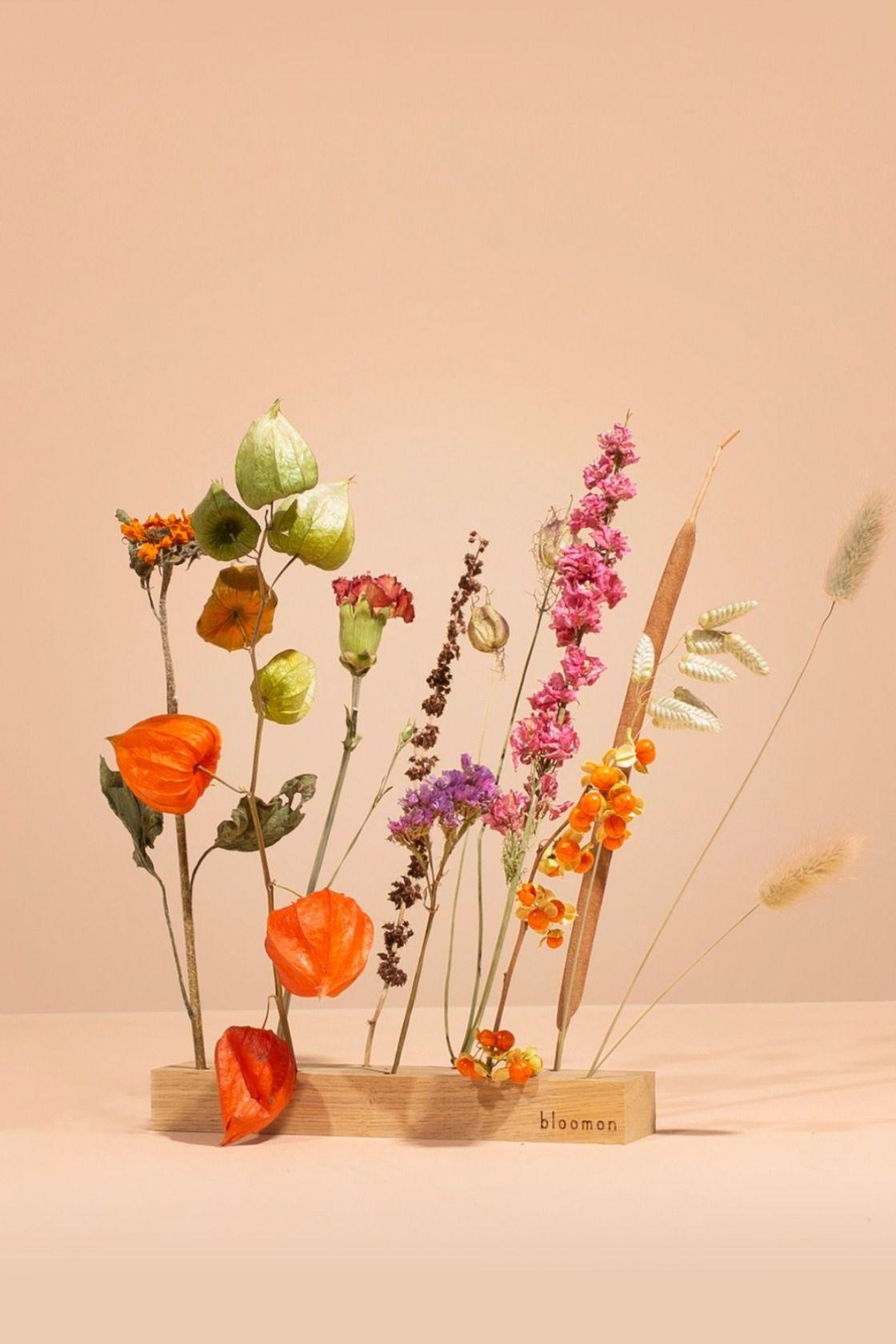 In unserem Blumen-Shop findest Du einmalige Geschenke aus frischen und getrockneten Blumen. Liebevoll verpackt und auf Wunsch mit persönlicher Karte.