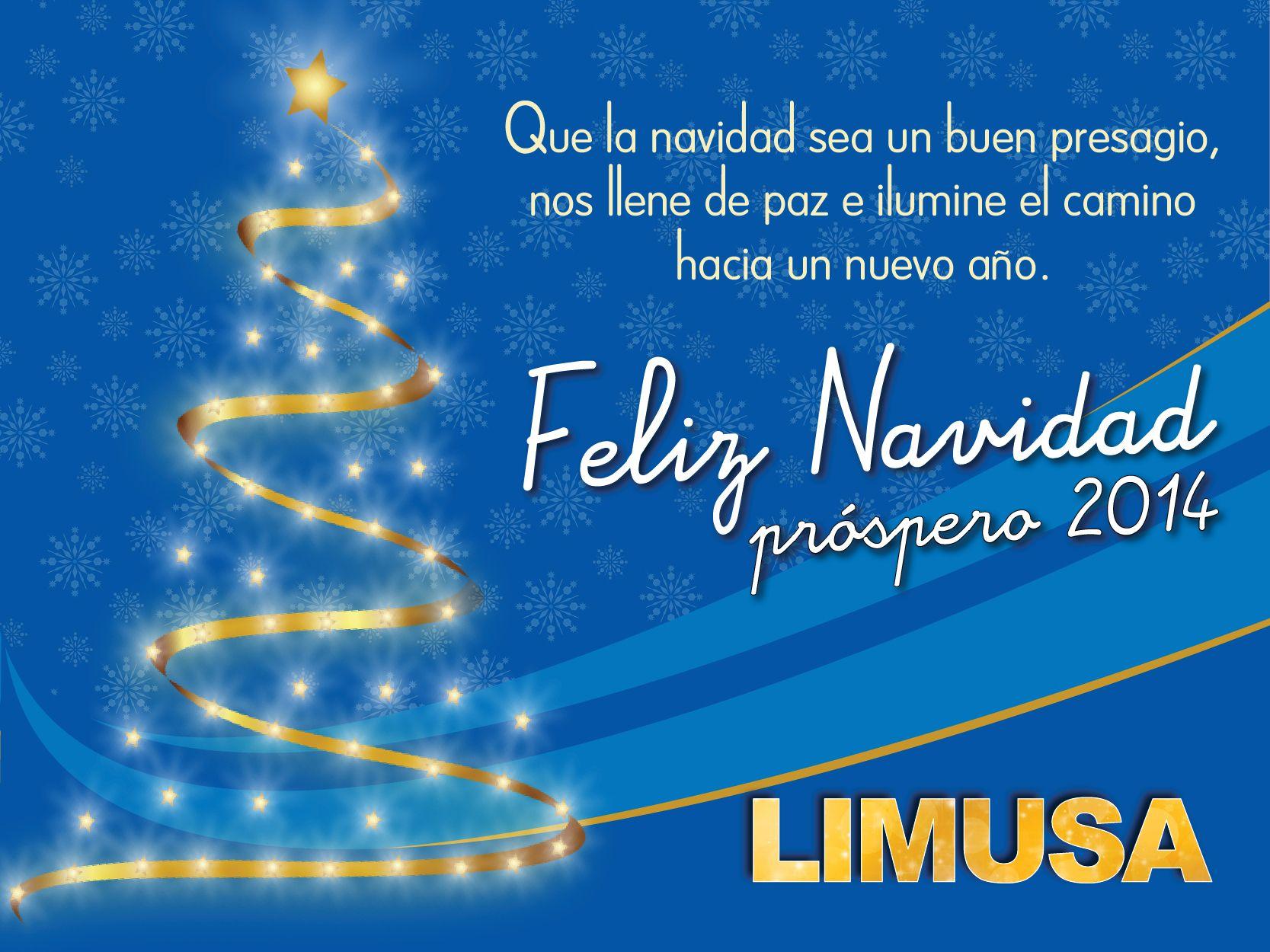 FELICES FIESTAS... Nuestros mejores deseos para esta temporada y el año que viene.   ¡Mucha luz y armonía!