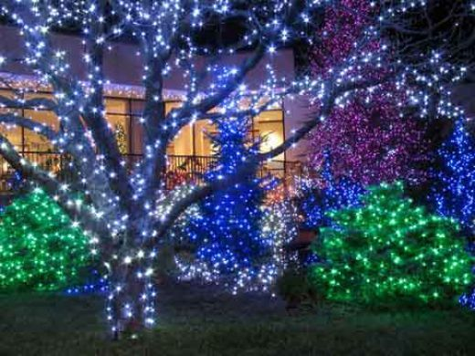 green blue purple and white christmas light display