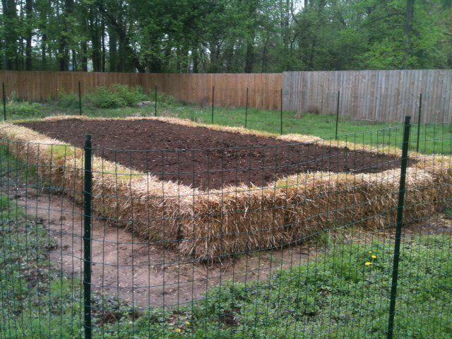 b191f428dc34de4e3196eb003a43f1c8 - Straw Bale Vs Hay Bale Gardening
