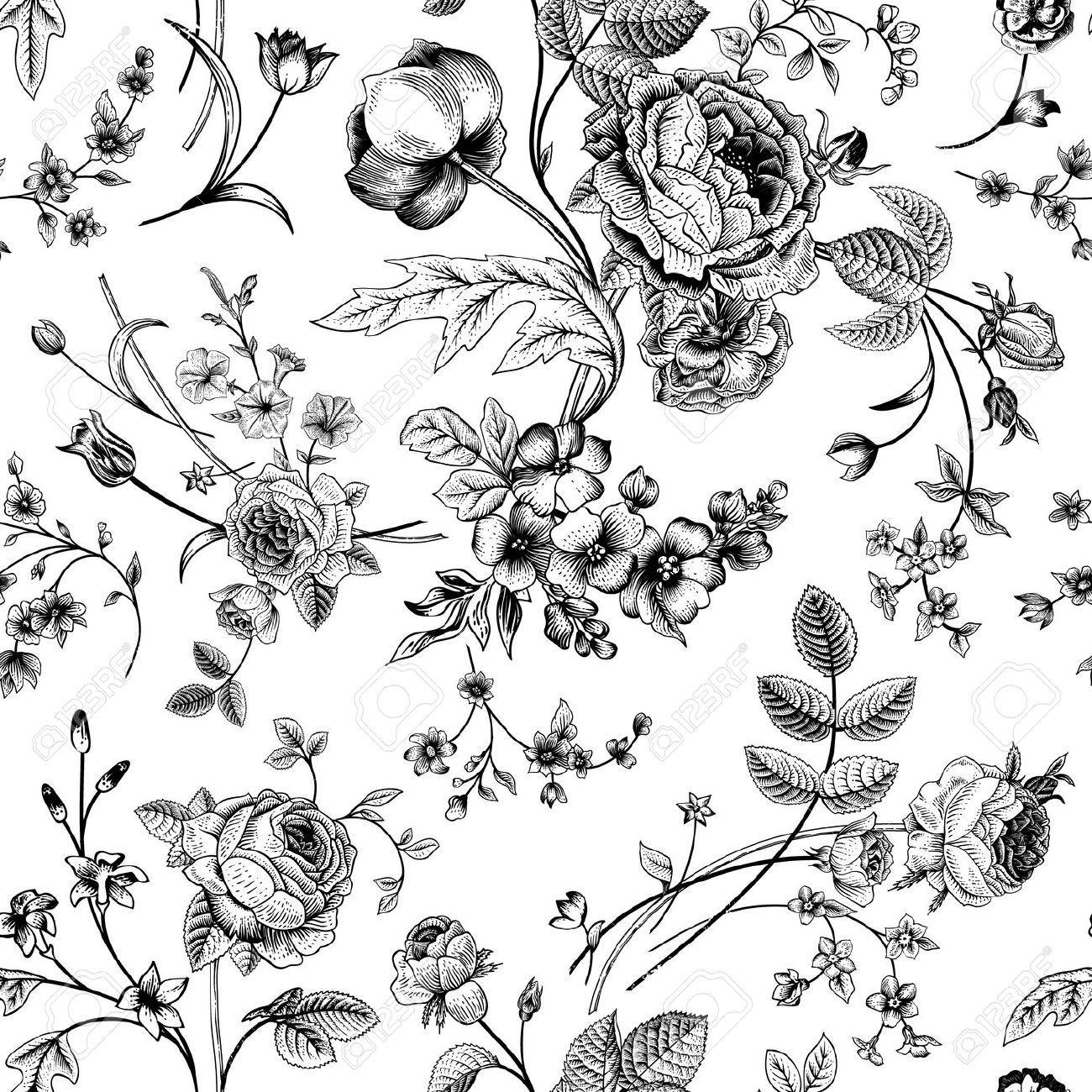 Stock Vector in 2020 Botanical illustration black, white