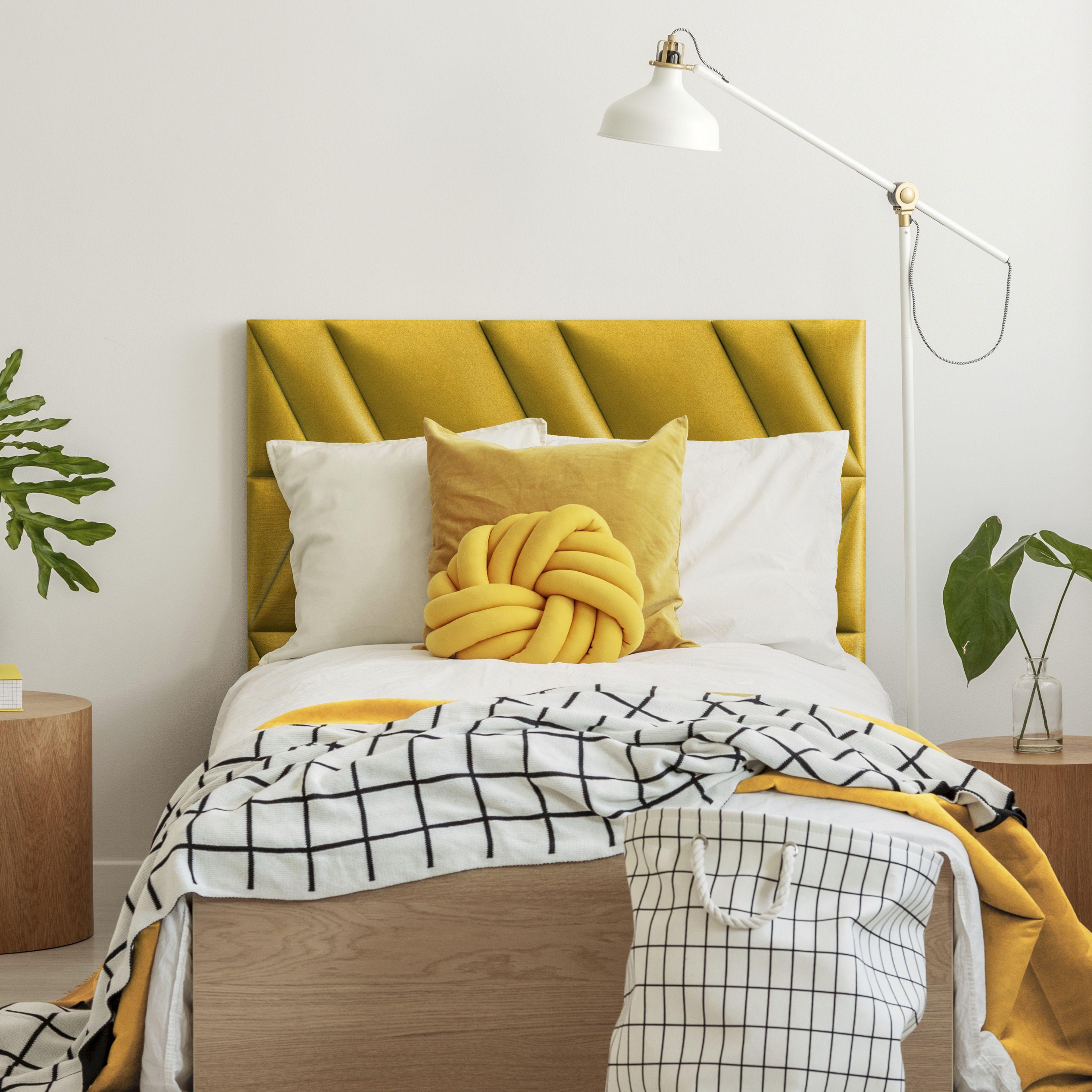 Mollis Abies Home Decor Design Home