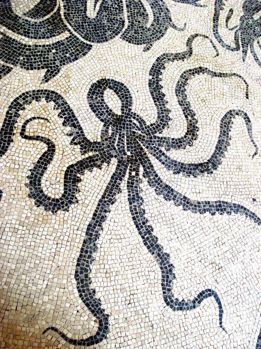 Octopus Mosaic From A Pompeii Bath House Photo Helen