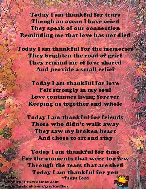Pin by marian reber on poems and verses pinterest grief poem everyday i am thankful for you thecheapjerseys Image collections