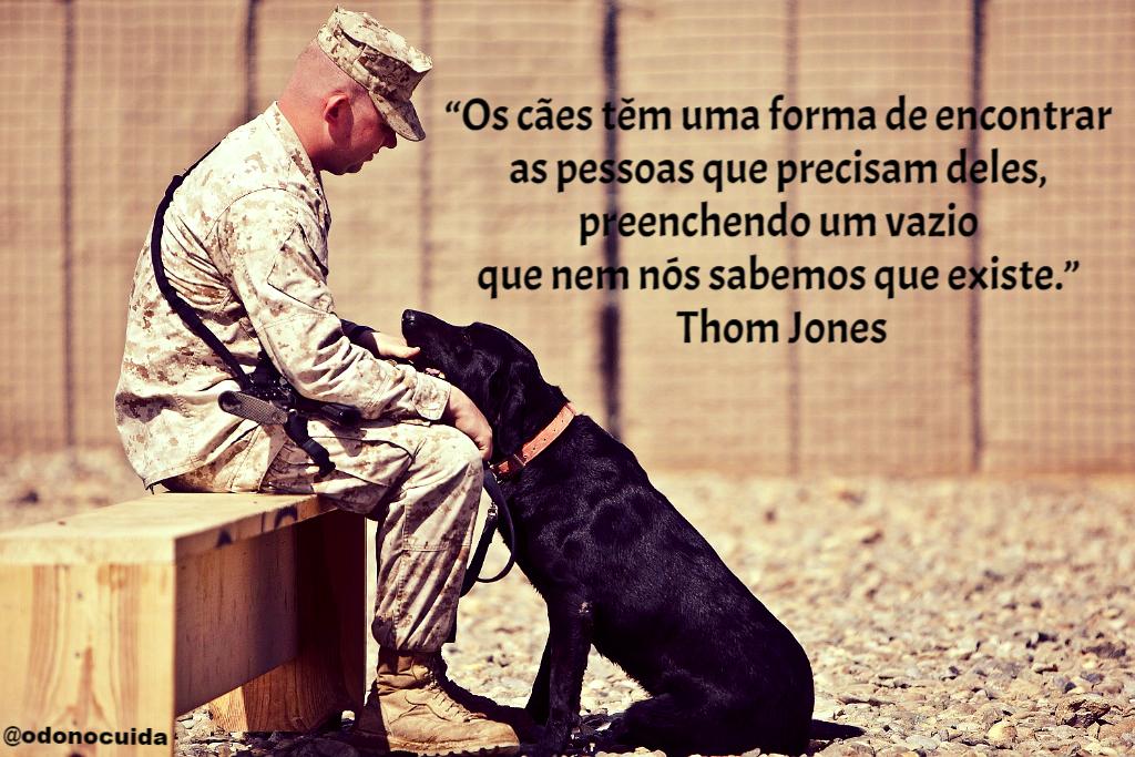 Frases Sobre Cães O Dono Cuida Frases Sobre Animais