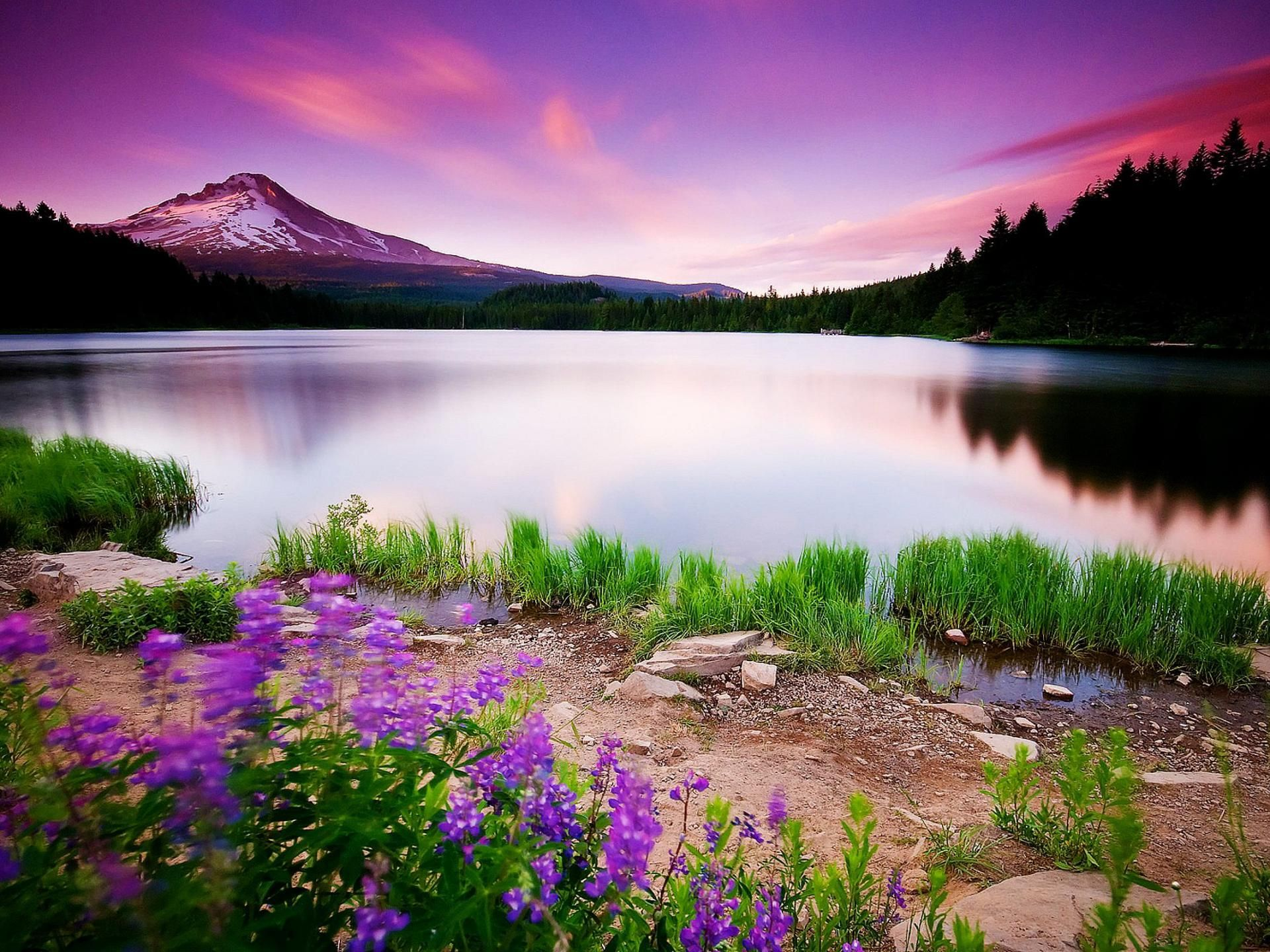 Lake view wallpapers Beautiful wallpaper collections