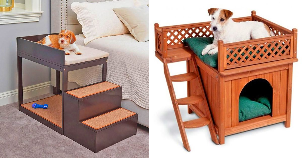 These Amazing Lofted Dog Beds Are Perfect For Pooches That