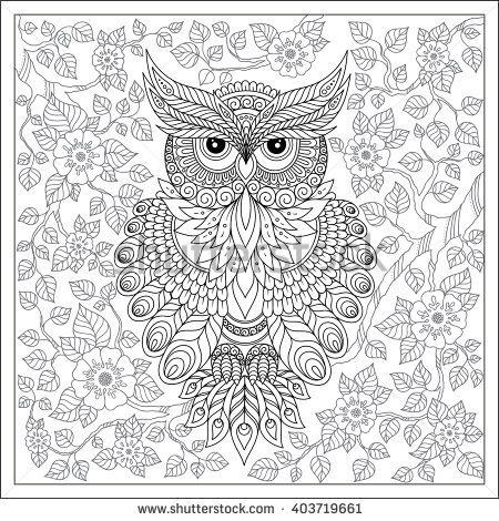 Coloring Page With Cute Owl And Floral Frame Book For Adults Children Black White Bird Collection Set Of Illustration